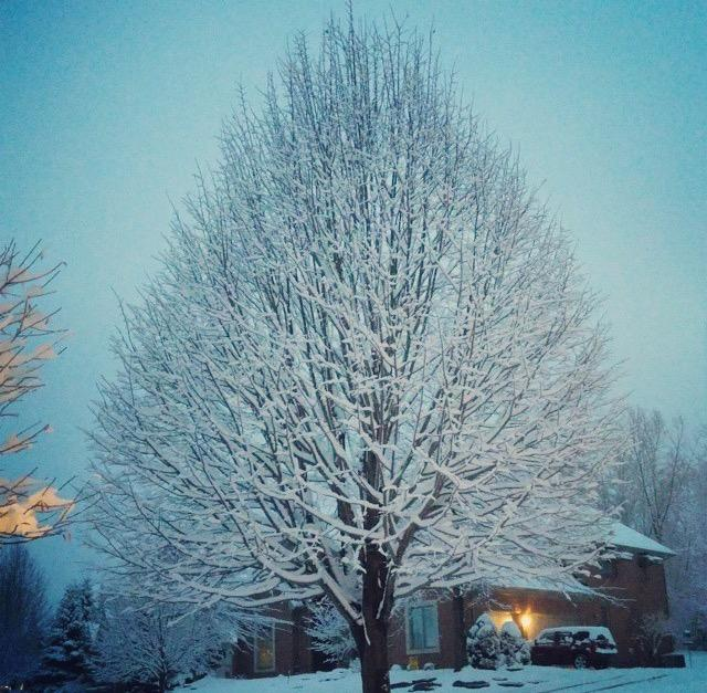 Snowy+weather+often+brings+about+Seasonal+Affective+Disorder%2C+also+known+as+SAD