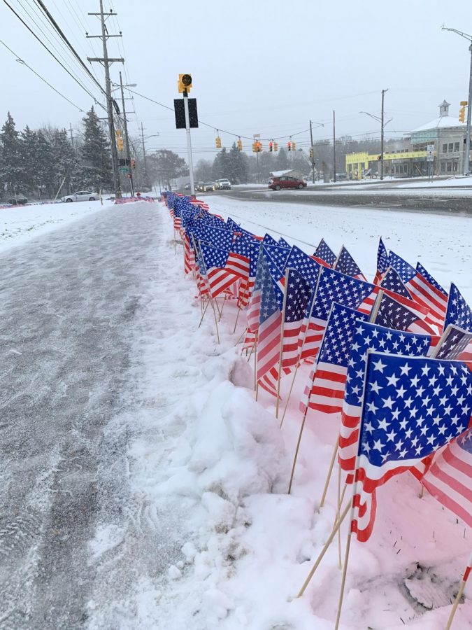 Students at Adams honor Veterans by planting flags in front of the school.