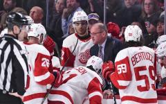 Red Wings Rebuilding Season in Full Effect