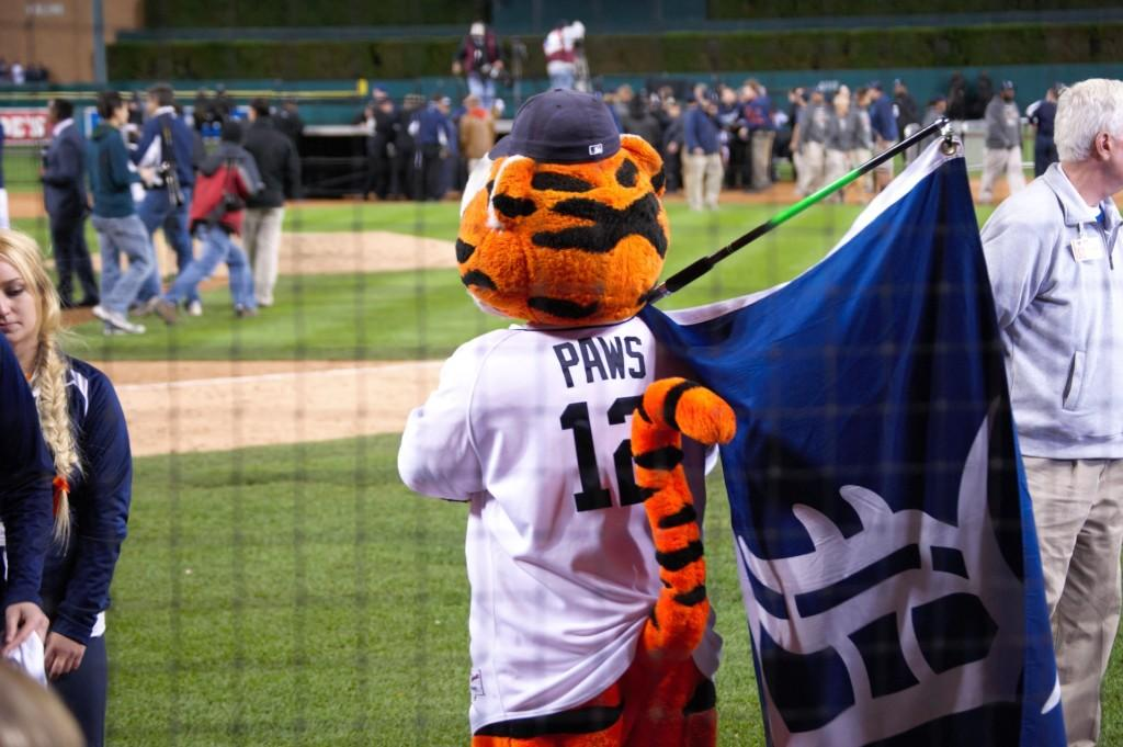 Paws waits in anticipation at the tigers game.