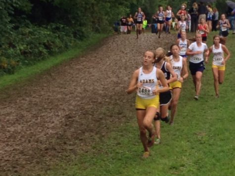 The Cross Country Team Runs for States
