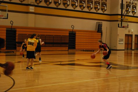 Adams Girls Varsity Basketball Assistant Coach Steps up