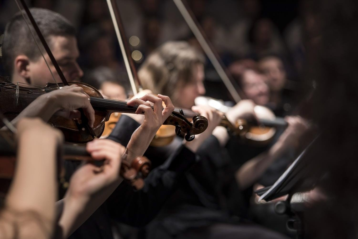 Rochester Community Schools launches orchestra program.