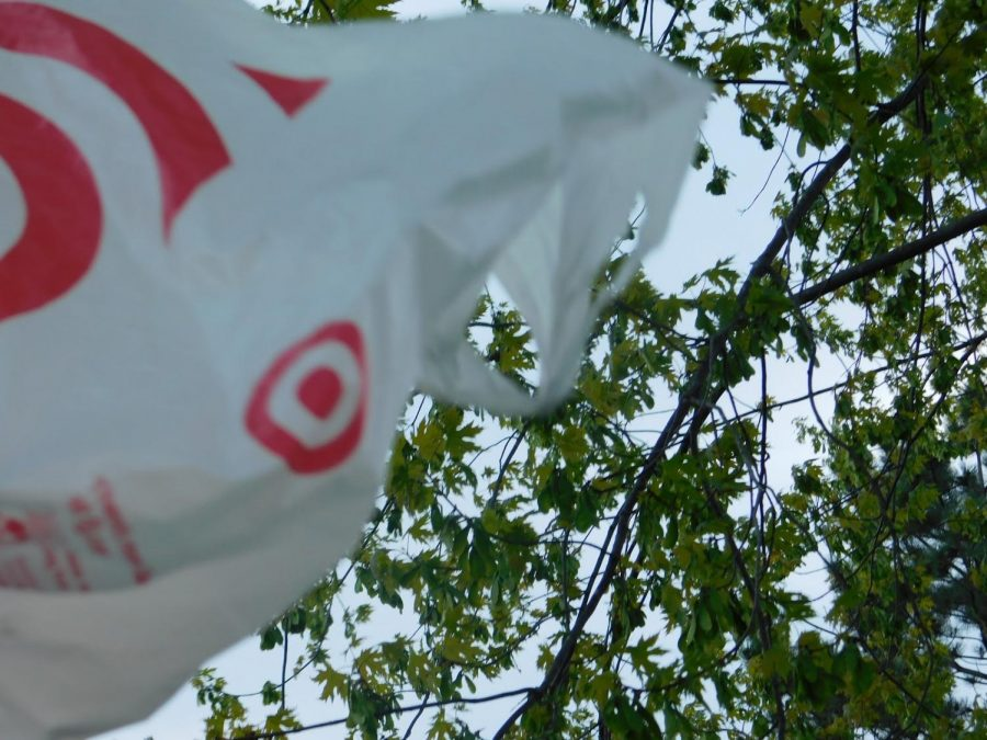 Plastic bags are a common form of plastic that pollutes the oceans.