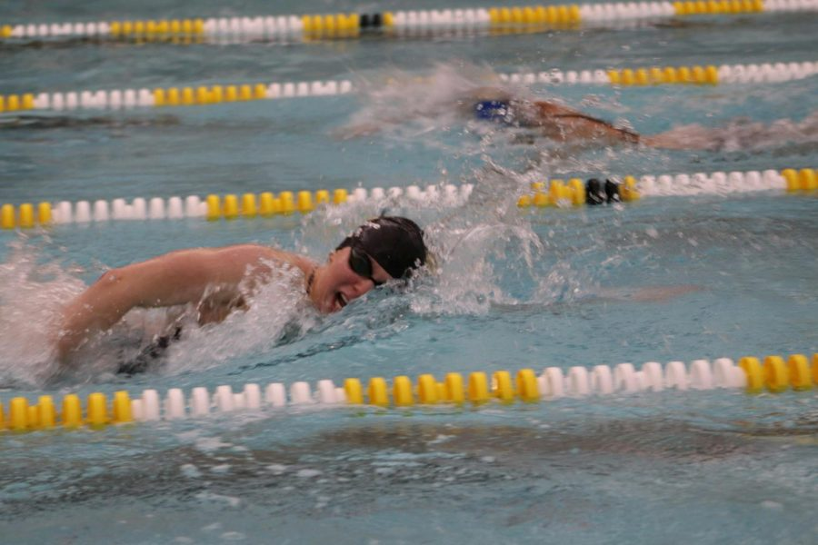 Lohner+swimming+for+the+Rochester+Adams+Swim+and+Dive+team+in+2018.