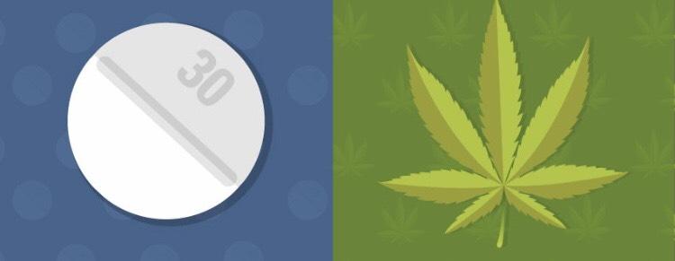 Pain pills vs. marijuana