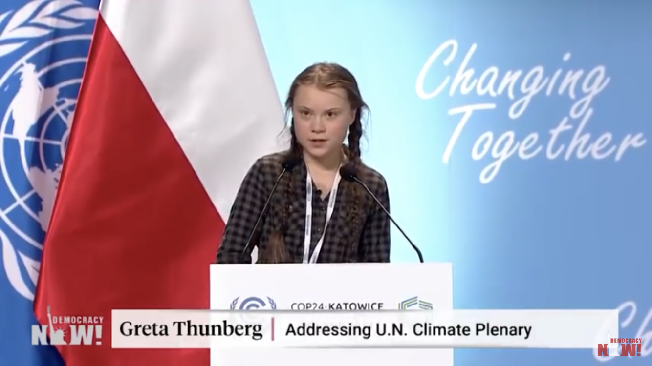 Greta Thunberg at the UN conference regarding climate change.