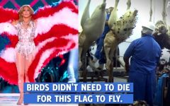 PETA's tweet Tweet from PETA displaying Jennifer Lopez wearing a feather flag and birds in a slaughterhouse.